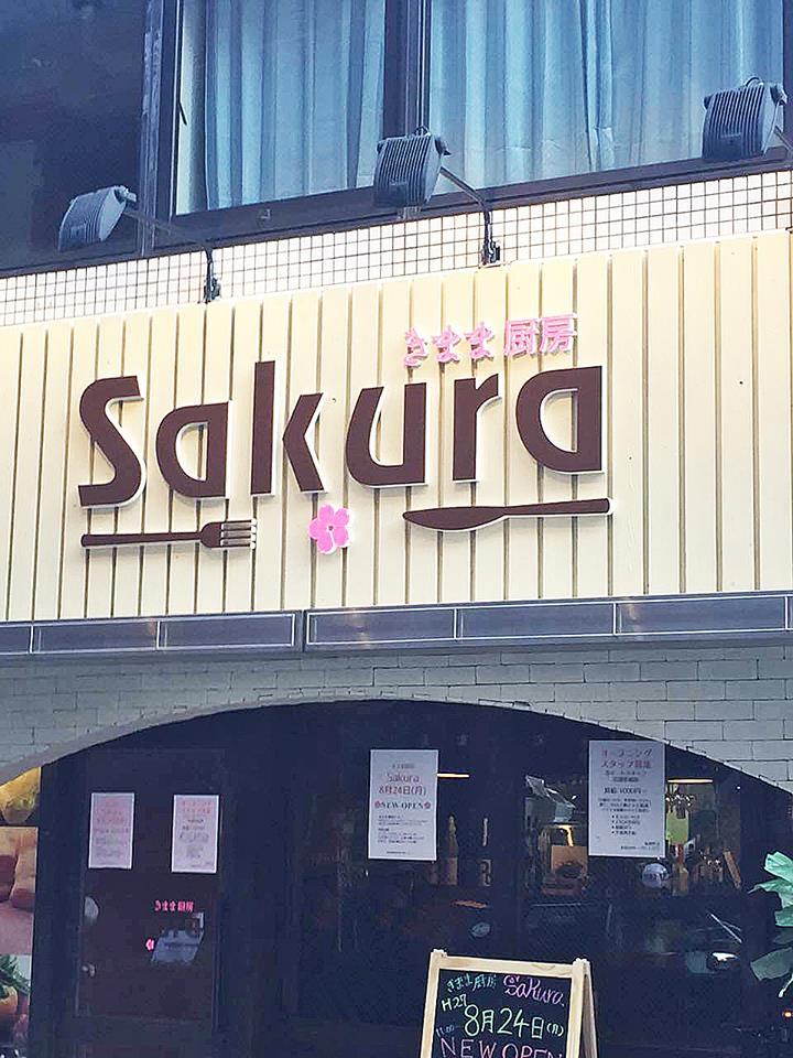 sakura (4)